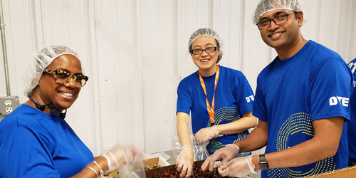 Three volunteers in blue shirts sort through produce with hairnets on