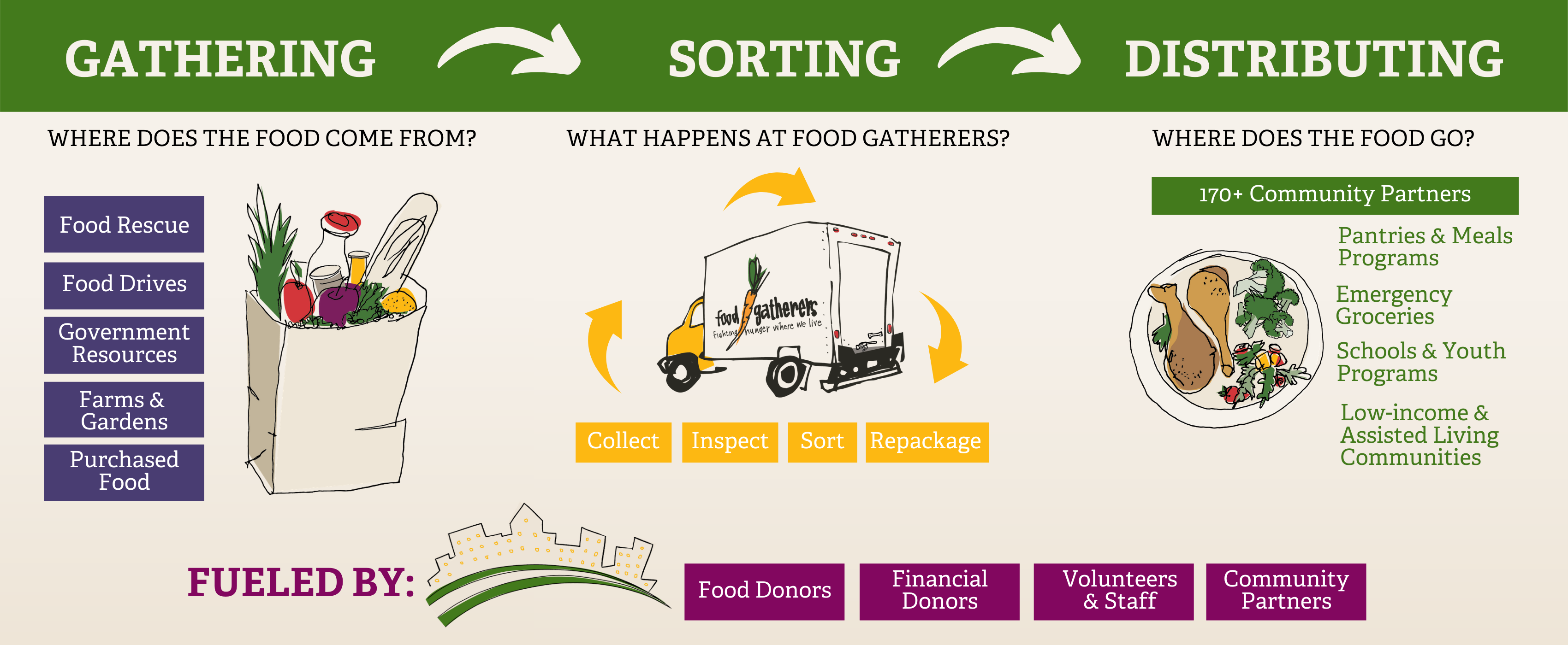 Infographic describing Food Gatherers' process of gathering, sorting, and distributing food.